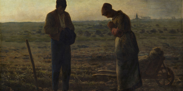 web-angelus-prayer-daily-farmers-millet.png